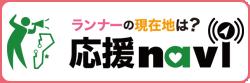 navi_button.png