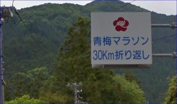 青梅折り返し (640x380).jpg
